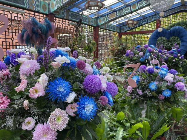 圖3.錫瑠環境綠化基金錢利用染色菊呈現菊來傳情~愛的禮讚