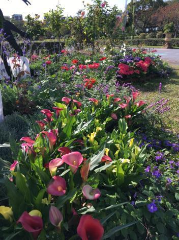 圖4. 多種花卉組成豐富的廣場地景.JPG