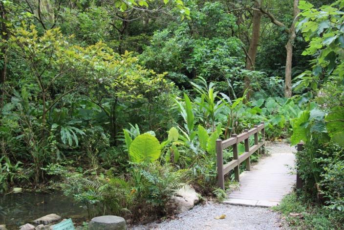 圖一、來到富陽自然生態公園絕對不能錯過豐富的動植物生態