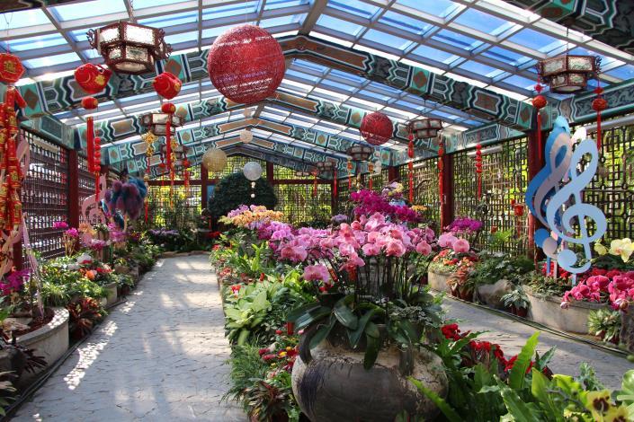 「士林官邸春節花卉展」將於春節期間喜氣登場
