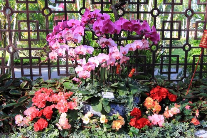 利用各式花卉呈現色彩繽紛燦爛的景緻