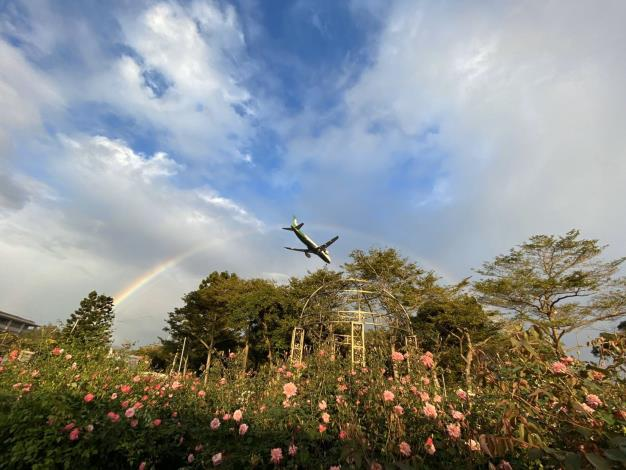 圖2. 雨後的玫瑰園瀰漫著花香與青草的特有的氣息。