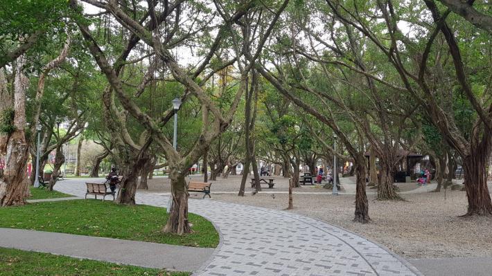 圖9.興隆公園保留大量既有喬木