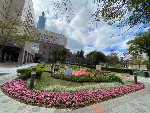 圖1市府北門廣場的隱藏版打卡點,前排的鬱金香與後面的櫻花廣場相互呼應