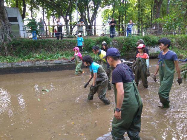 圖3.志工移除生態水域裡的外來種