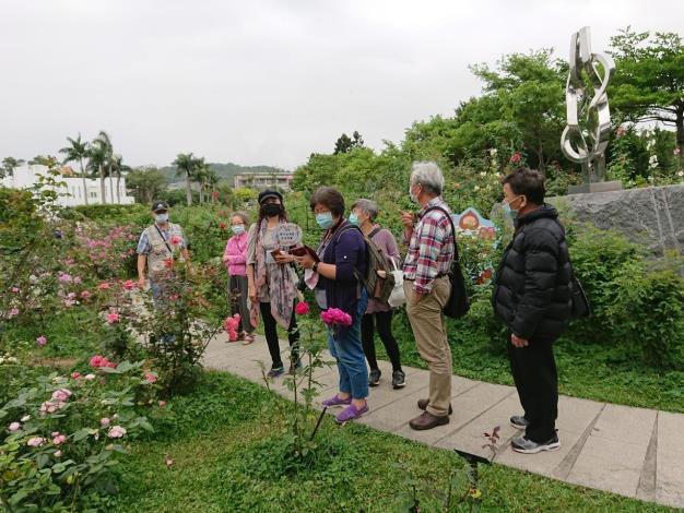 圖3 志工不畏風雨,經心呵護及修剪玫瑰,民眾參觀玫瑰園時,也提供熱情導覽。