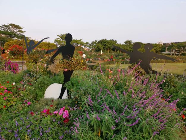 圖4花海香草區墨西哥鼠尾草營造紫色浪漫氛圍。