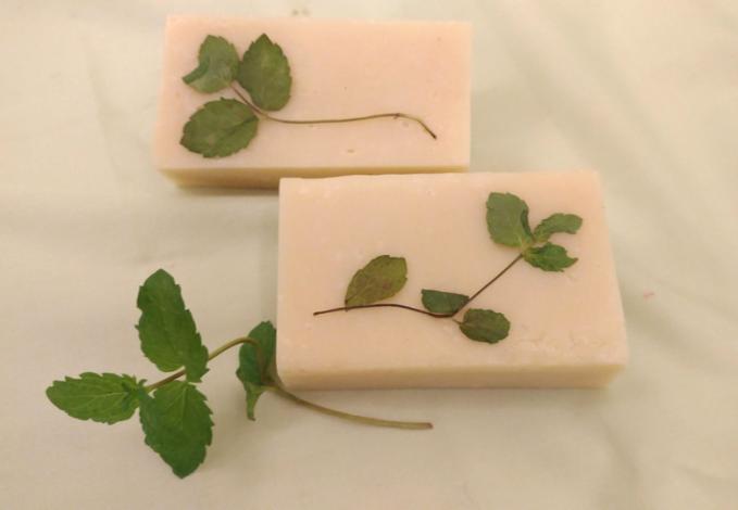 圖4.8月14日「清新涼感薄荷皂DIY」(材料費150元)