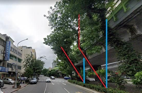 (圖4)現況歪斜3株臘腸樹,紅線為歪斜主幹,藍線為垂直線