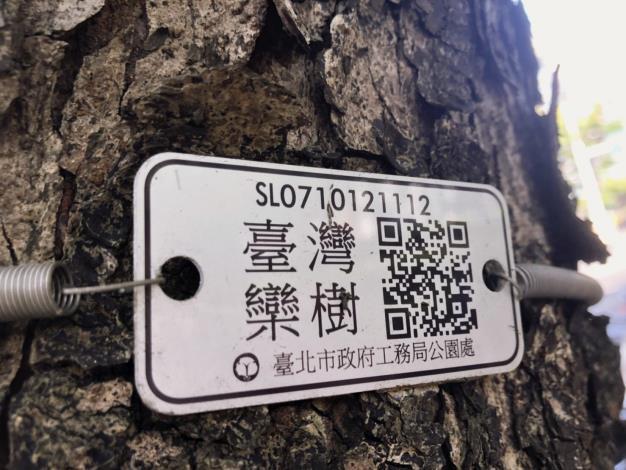 圖四、臺灣欒樹專屬名牌
