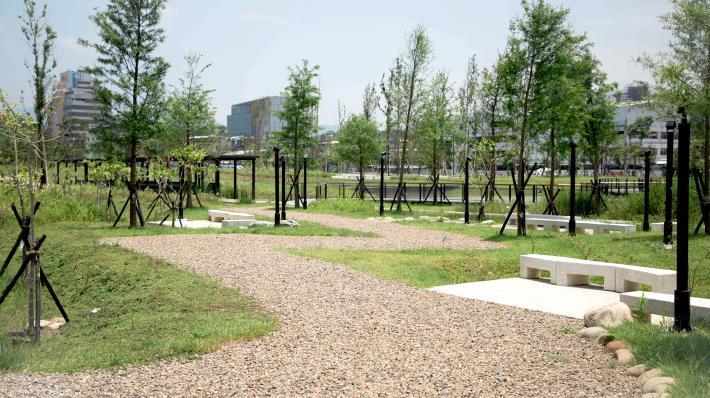 照片2-新新公園落雨松水上平台