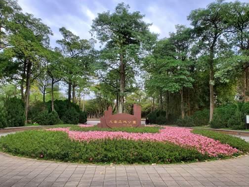 圖4.公園11號入口區以5月開花俗稱夏鵑的皋月杜鵑及草花,以迴繞的線條重新形塑如盛開花朵圖形的「花形廣場」