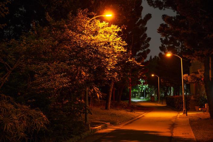 6螢火蟲專用LED燈