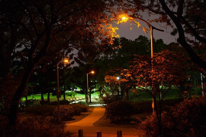 5螢火蟲專用LED燈