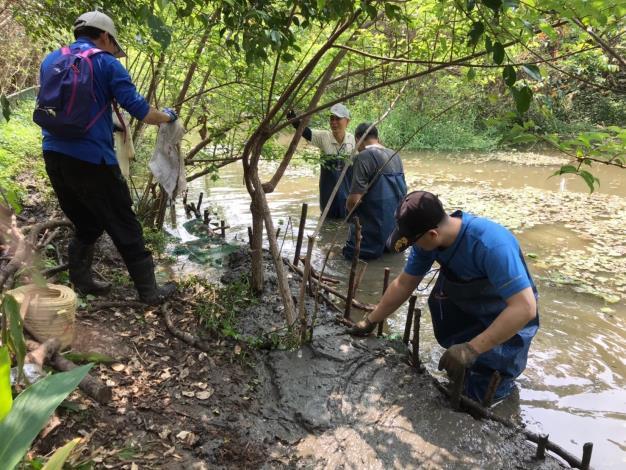 螢火蟲季來臨前夕,榮星花園公園志工團隊進行本月工作日,清淤泥及清外來種。