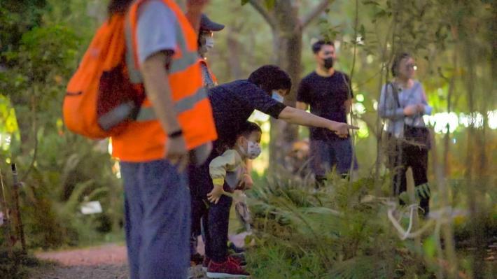 歡迎大家一起來大安森林公園欣賞螢火蟲