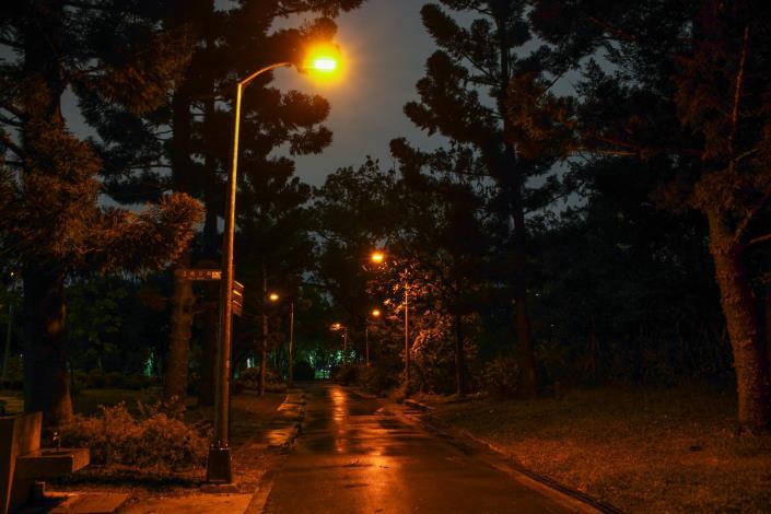 大安森林公園-螢火蟲燈