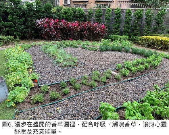 圖6.漫步在盛開的香草園裡,配合呼吸、觸嗅香草,讓身心靈紓壓及充滿能量.JPG
