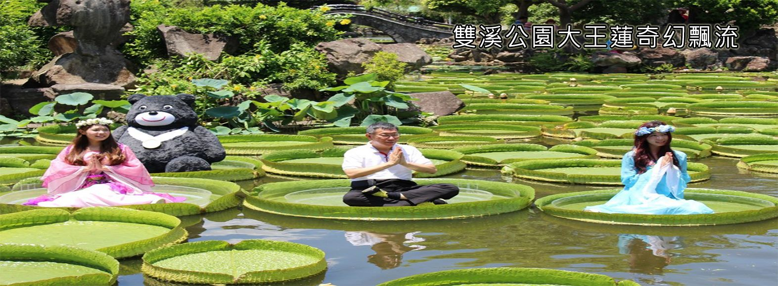 雙溪公園大王蓮奇幻飄流