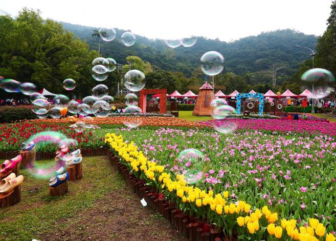 佳 作:「泡泡飛舞」攝自王傳吉.JPG