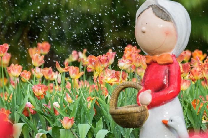 佳 作:「春雨」攝自孫韻琦