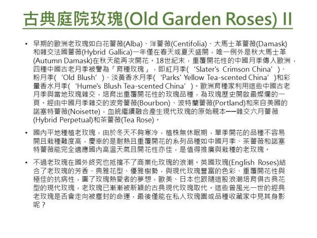 古典庭園玫瑰II.JPG