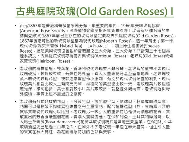 古典庭園玫瑰I.JPG