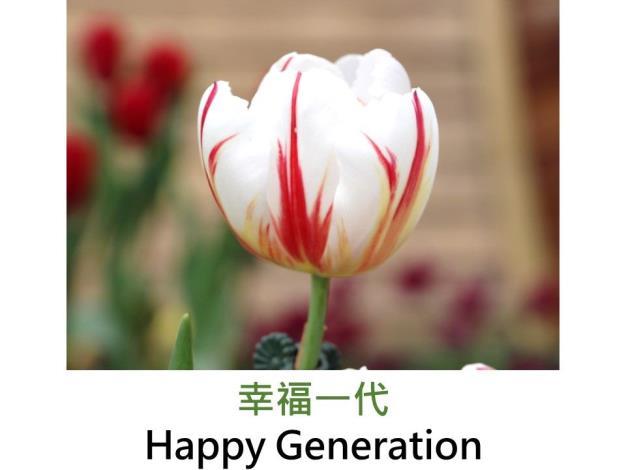 幸福一代.JPG
