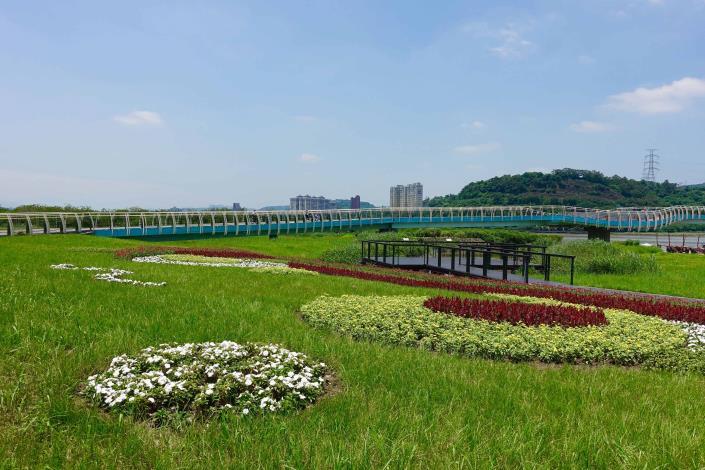 關渡碼頭花海 為夏季的碼頭景象增添不同風貌[另開新視窗]