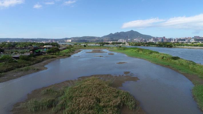 社子島濕地景色如畫、生態豐富