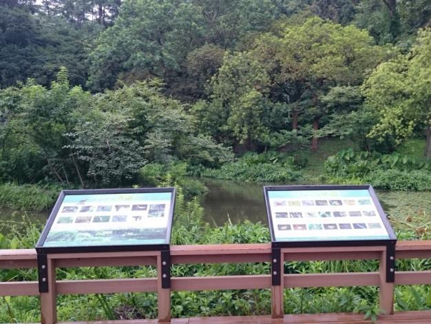在生態調查中發現崇仰公園共有17種特有種及240種非特有原生種植物,29種鳥類,7種哺乳類動物,在這裏可以看到領角鴞和台灣藍鵲[開啟新連結]