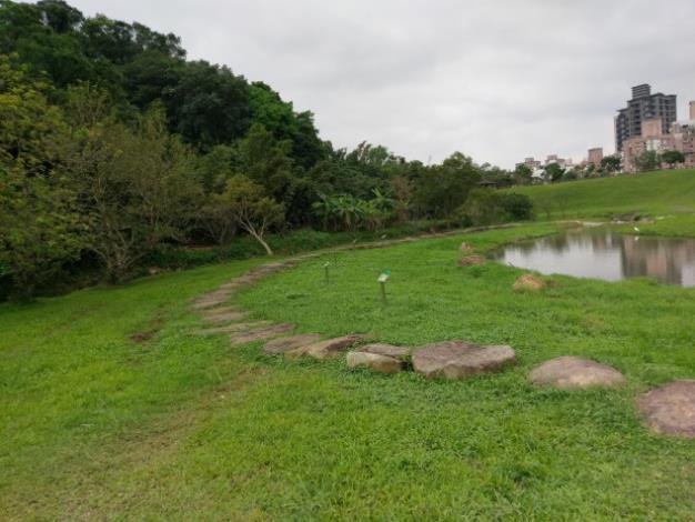 本生態滯洪池將自然景觀與防洪工程融為一體,營造人工濕地生態池