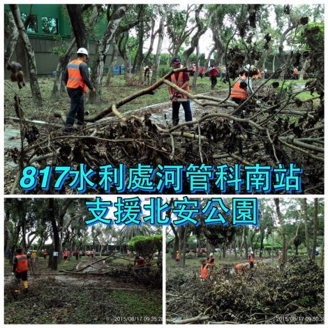 8月17日北安公園整理前枯枝