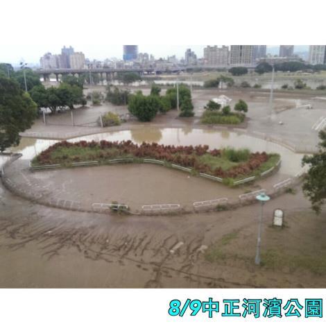8月9日中正河濱公園週遭[開啟新連結]
