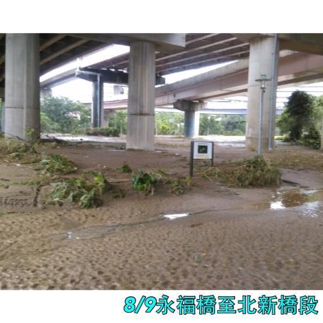 8月9日永福橋至北新橋段橋下[開啟新連結]