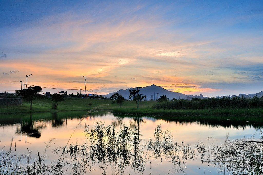 社子島濕地美景 攝影 楊朗