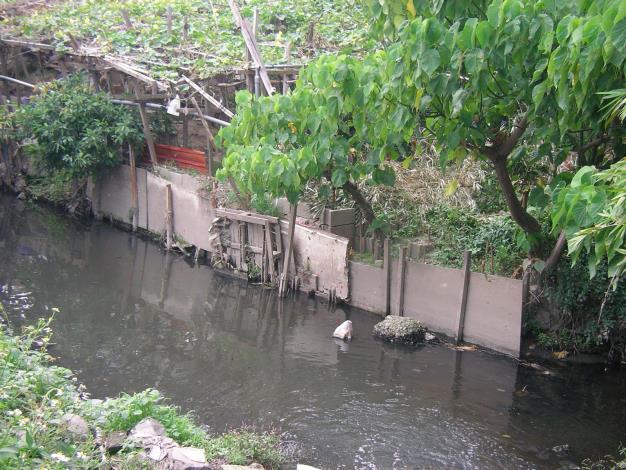 兩岸無固定式之堤防構造,遇颱風豪雨有淹水之疑慮