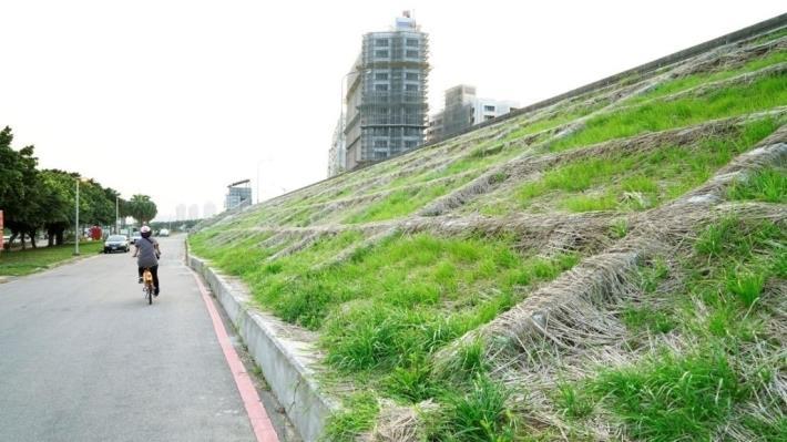 堤坡綠美化