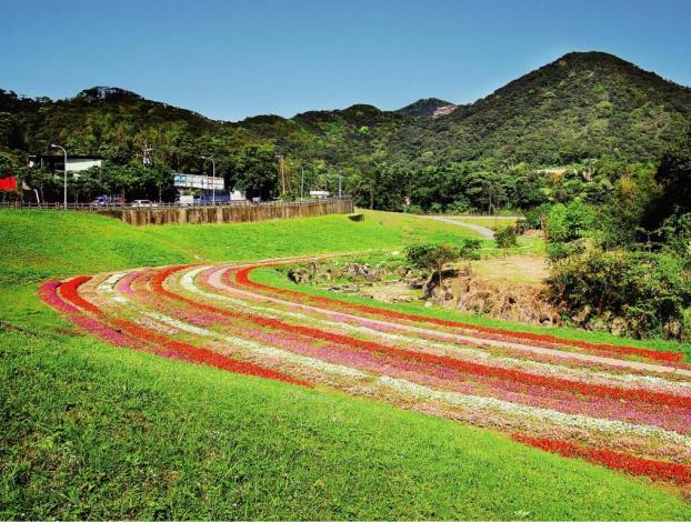 大溝溪生態治水園區花海景觀(Flower Fields in the Ecological and Flood Control of Dagoi Stream Park)