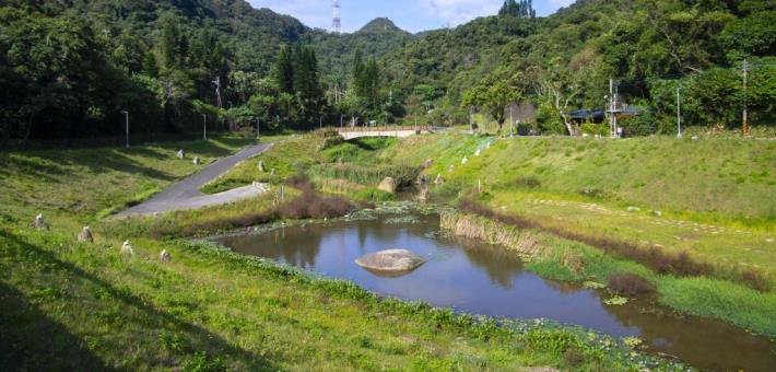 2020 Taiwan Landscape Awards Honorable Mention - Ecology of Jinrui Flood Management Park