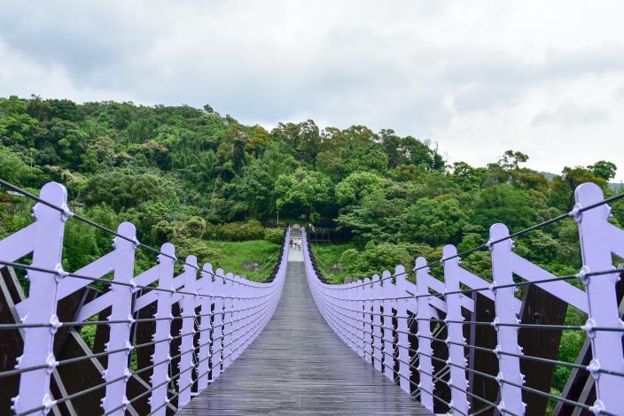 橫越大崙頭山及忠勇山谷間的白石湖吊橋.JPG[另開新視窗]