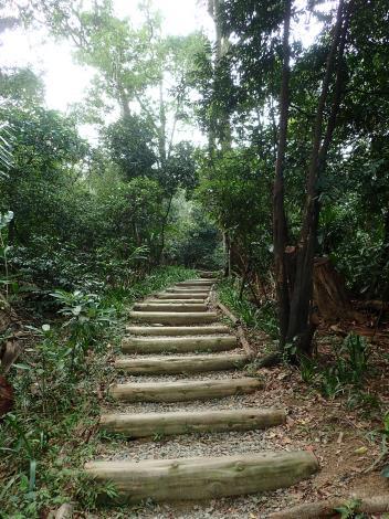 04福州山有部分路段可見手作步道,這是臺北市第一條民眾合作完成的手作步道.JPG[另開新視窗]