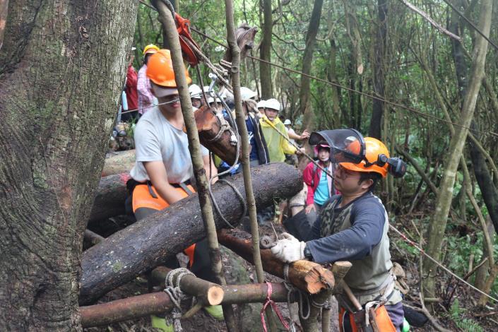 林地架線集材之實務示範。