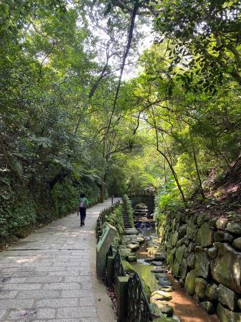 照片1 虎山溪綠色隧道