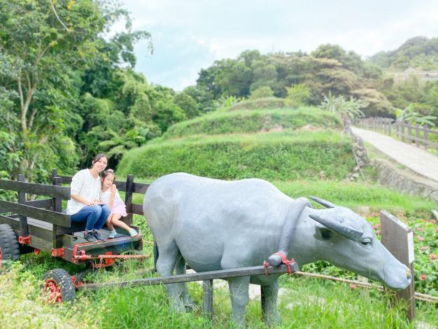 照片2 樟樹步道水牛車,充滿農村意象適合拍照留念。