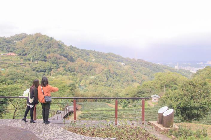照片3 展演廣場俯瞰茶園梯田景致。