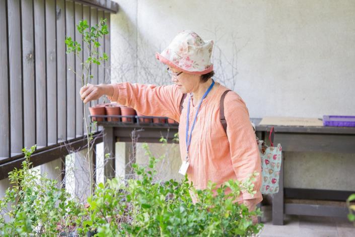 10活動現場免費贈送樹苗 歡迎自備環保袋領取 數量有限贈完為止