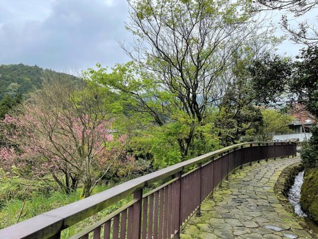 17.自然恬靜山中小徑
