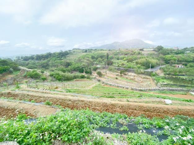 3.遠眺梯田景致