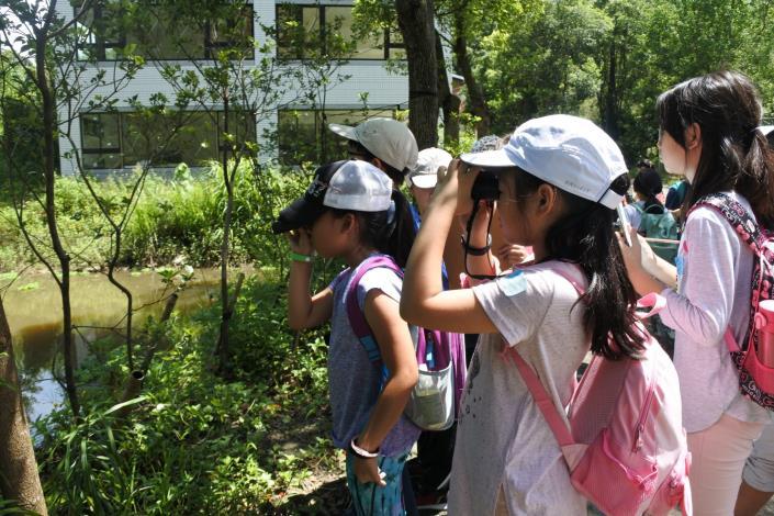 06-內溝溪蘊藏數十種鳥類資源,【森林~我的鳥類大觀園】讓初次賞鳥的你一次就上手!